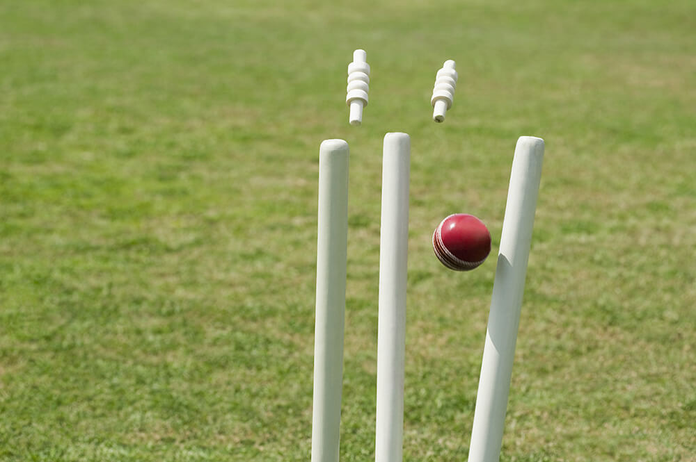 Spin a ball in cricket
