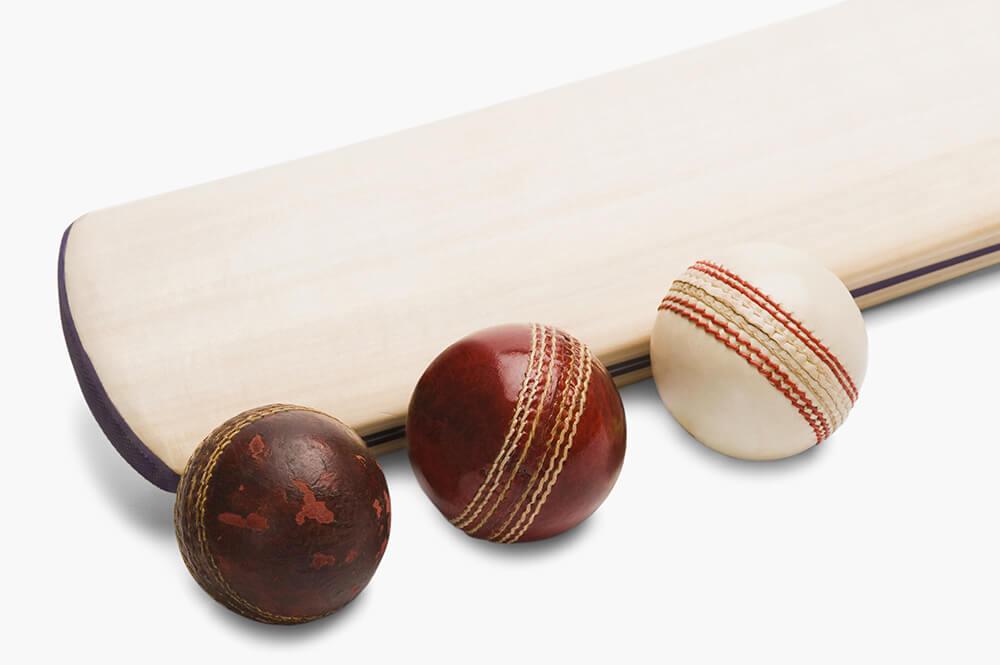 Yorker in Cricket
