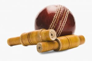 Who Is the Father of Cricket?