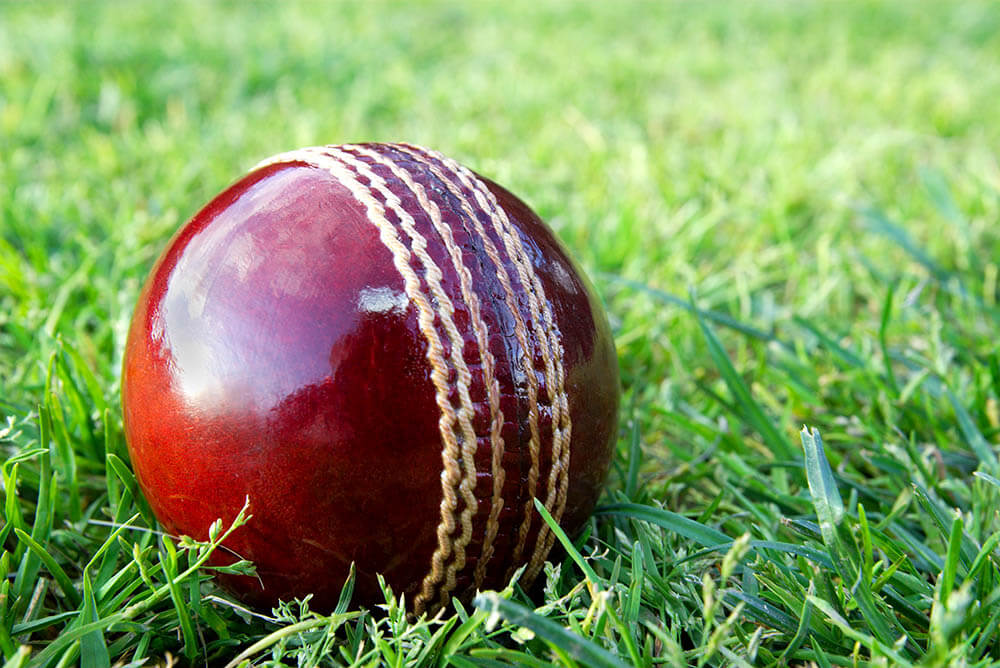 Canterbury Kings vs Otago Volts Match 25 Preview January 30, 2021