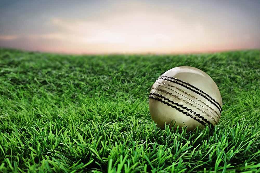 Top 10 Greatest Batsmen in ODIs