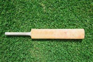 Top Batsmen Fastest to 3000 Runs in Tests