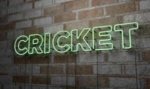 Sunrisers Hyderabad vs Chennai Super Kings: September 30, IPL 2021 Prediction